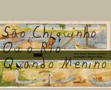 Livro - São Chiquinho ou o rio quando menino