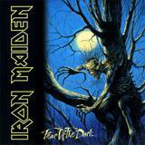 Lp Iron Maiden Fear of The Dark Duplo 180gr - Elusive