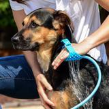 Mangueira Para Pet SPRAY Massageadora Banho Em Animais Com Luva - Wd