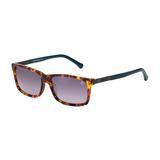 Oculos Sol Forum F0013 Marrom Demi C  Azul L Cinza Degr