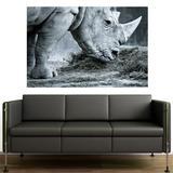 Painel Adesivo de Parede - Rinoceronte - 067pnp - Allodi