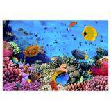 Painel de festa Infantil Fundo do Mar Peixes 1.50m X 1.00m - Wrio