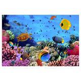 Painel de festa Infantil Fundo do Mar Peixes 3.00m X 1.70m - Wrio