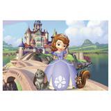 Painel de festa Infantil Princesa Sofia 1.80m X 1.30m - Wrio