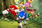 Painel de Festa Sonic Boom 05 - Colormyhome
