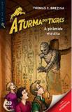 Piramide maldita, a -  a turma dos tigres - Atica