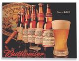 Placa Budweiser Garrafas - Tecnolaser