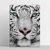 Placa Decorativa Tigre 30X40Cm - Artplex