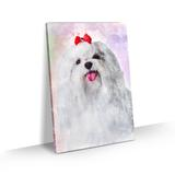 Quadro Cachorro Maltês Pelo Longo Colorido Aquarela 60x40 - Bimper