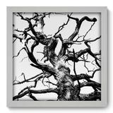 Quadro Decorativo - Árvore - 33cm x 33cm - 043qnpbb - Allodi