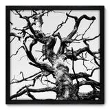 Quadro Decorativo - Árvore - 50cm x 50cm - 043qnpcp - Allodi