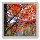 Quadro Decorativo - Árvore - 50cm x 50cm - 061qndcb - Allodi