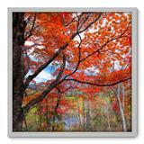 Quadro Decorativo - Árvore - 70cm x 70cm - 061qnddb - Allodi