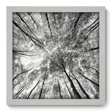 Quadro Decorativo - Árvores - 33cm x 33cm - 036qnpbb - Allodi
