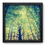 Quadro Decorativo - Árvores - 33cm x 33cm - 046qnpbp - Allodi