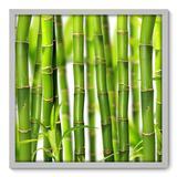 Quadro Decorativo - Bambu - 70cm x 70cm - 009qnddb - Allodi