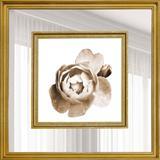 Quadro Decorativo com Margem de Espelho Rosa Tom Sépia 55x55cm - Decore pronto
