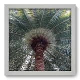 Quadro Decorativo - Coqueiro - 33cm x 33cm - 043qndbb - Allodi