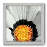 Quadro Decorativo - Flor - 22cm x 22cm - 007qnfab - Allodi