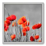 Quadro Decorativo - Flores - 50cm x 50cm - 020qnfcb - Allodi