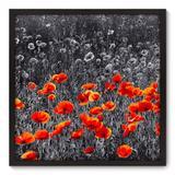 Quadro Decorativo - Flores - 70cm x 70cm - 022qnfdp - Allodi