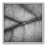 Quadro Decorativo - Folha - 70cm x 70cm - 029qnddb - Allodi