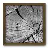 Quadro Decorativo - Tronco - 33cm x 33cm - 275qddm - Allodi