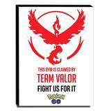 Quadro Pokémon GO Team Valor Canvas 40x30cm-INF010 - Lubrano decor
