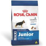 Ração Royal Canin Maxi Junior para Cães Raças Grandes Filhotes- 15 Kg