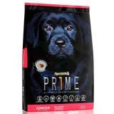 Ração Special Dog Prime Júnior Para Cães Filhotes Raças Grandes - Special dog - contém carinho