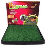 Refil Graminha Pet Green Furacão Pet