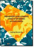 Representacoes sociais e imaginario coletivo na contabilidade: um estudo em - Com arte