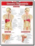 Resumao medicina - sistema digestorio avancado