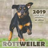 Rottweiler 2019 Mini Wall Calendar (UK Edition) - Gumdrop press