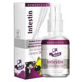 Sistema de Terapia Homeopet Diarreia Crônica Intestin 30 ml