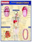 Sistema digestorio - Resumao