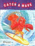 Storytown intervention interactive reader grade 5 catch the wave - Houghton mifflin