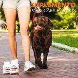 Suplemento Alimentar IMDerme 1000 Cães E Gatos 45 Capsulas - Nutripharme