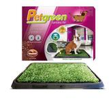Tapete higiênico pet green com grama artificial furacaopet - Furacão pet