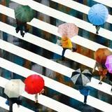 Tela Umbrella Listras 100cm - Occa Moderna