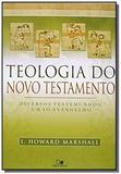 Teologia do novo testamento - diversos testemunhos - Vida nova