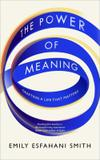 The Power Of Meaning - Crafting A Life That Matters - Rider