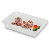 Travessa plástica para alimentos Sanremo 28,7 x 19,7 x 6 cm - 190