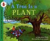 Tree is a plant, a - Hco - harper usa