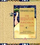Um beija Flor Mora na Lua - Coquetel - grupo ediouro