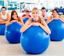 10 Bolas De Ginástica Yoga Pilates Academia 65 Cm - Western