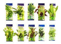 10 Plantas Em Seda Para Decoração De Aquários, Lagos, Vasos - Kares