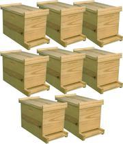 8 Unidades Caixa Núcleo Isca Captura Abelha Pínus 5 Quadros - Beethoven Agropet