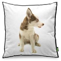 Almofada Love Dogs Black Edition - Husky Siberiano - Yaay