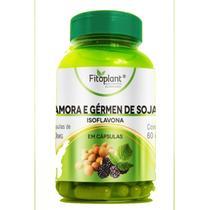 Amora com Gérmen de Soja 60 Cápsulas 500mg Fitoplant -